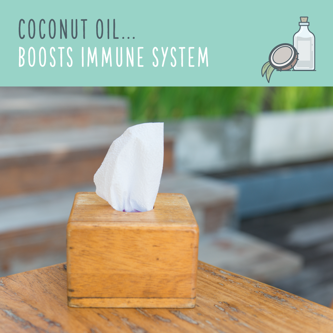 coconut oil uses immune system