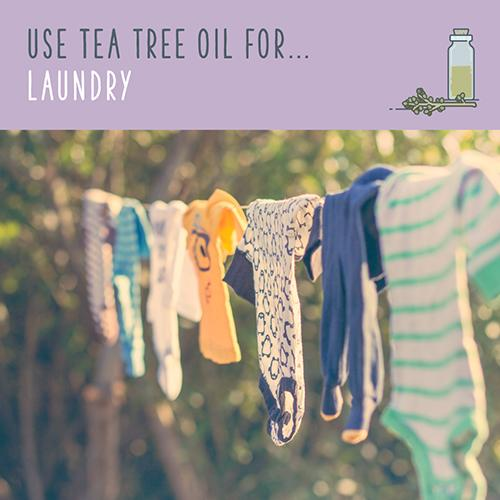 tea tree oil for laundry
