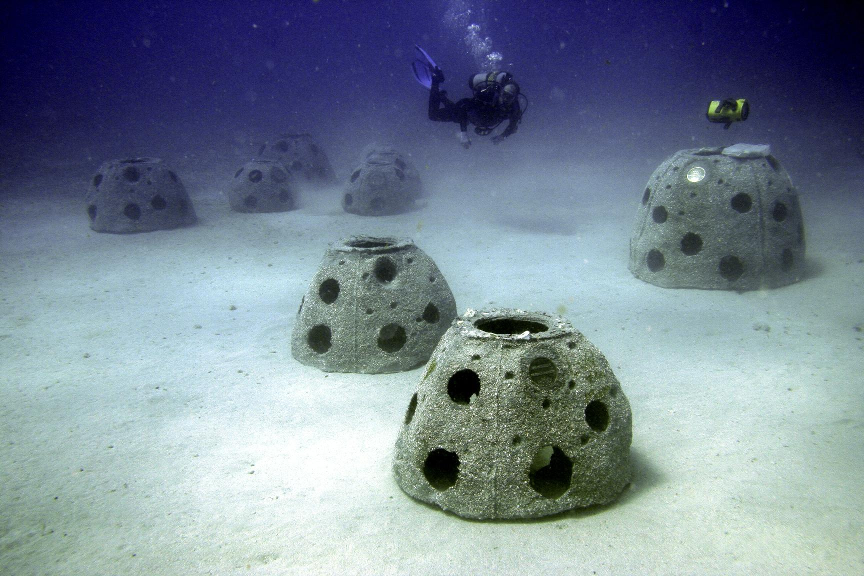 reef balls green burial option