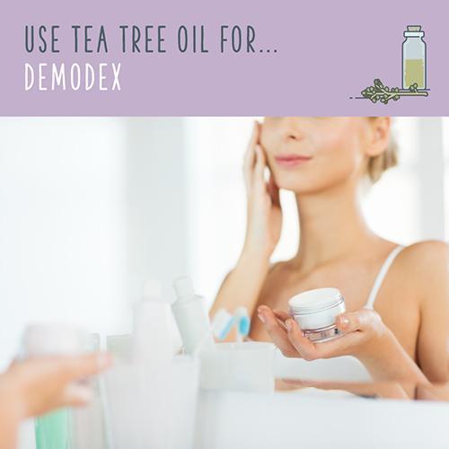 tea tree oil for demodex