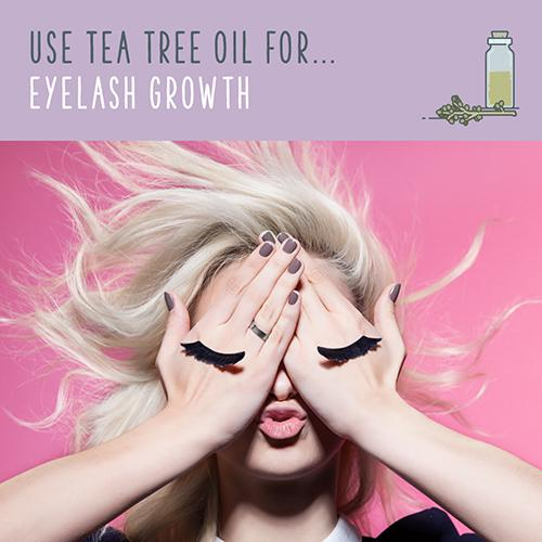 tea tree oil for eyelash growth
