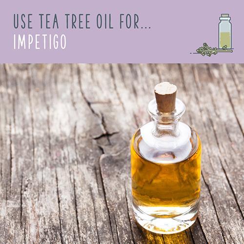 tea tree uses for impetigo