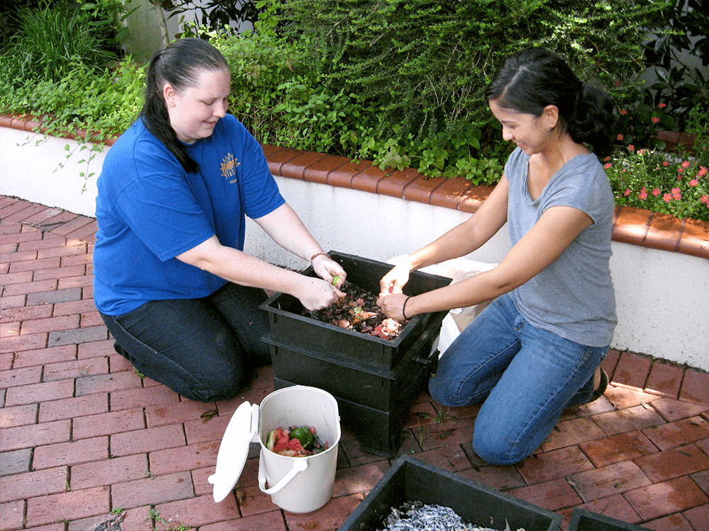 Two gardeners tending to vermicompost bin