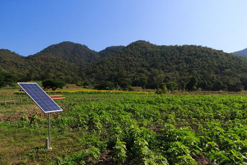 Solar farming: solar panel in farm field