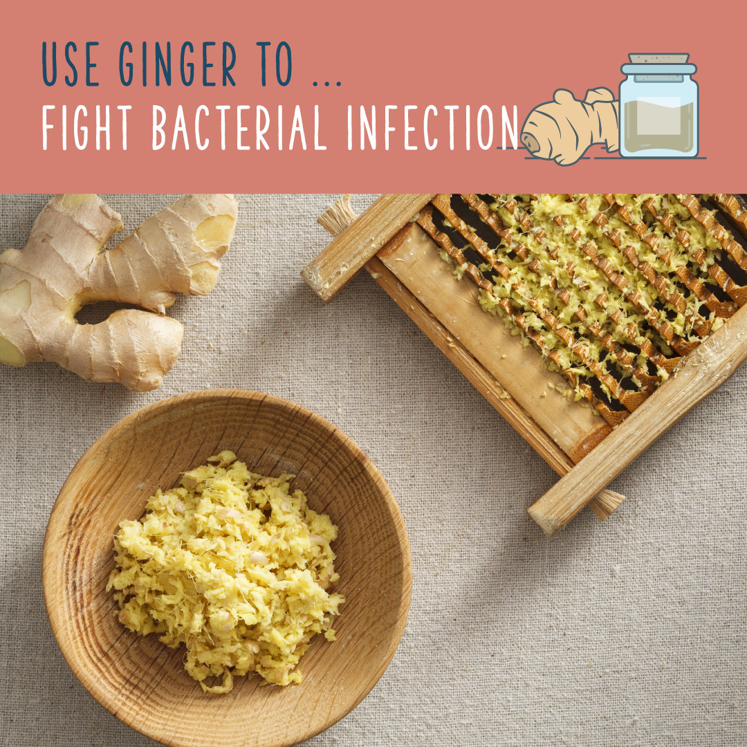 ginger plant fights infection