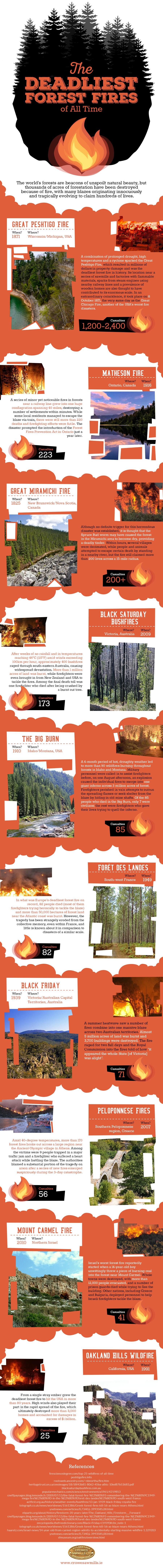 Deadliest forest fires infographic