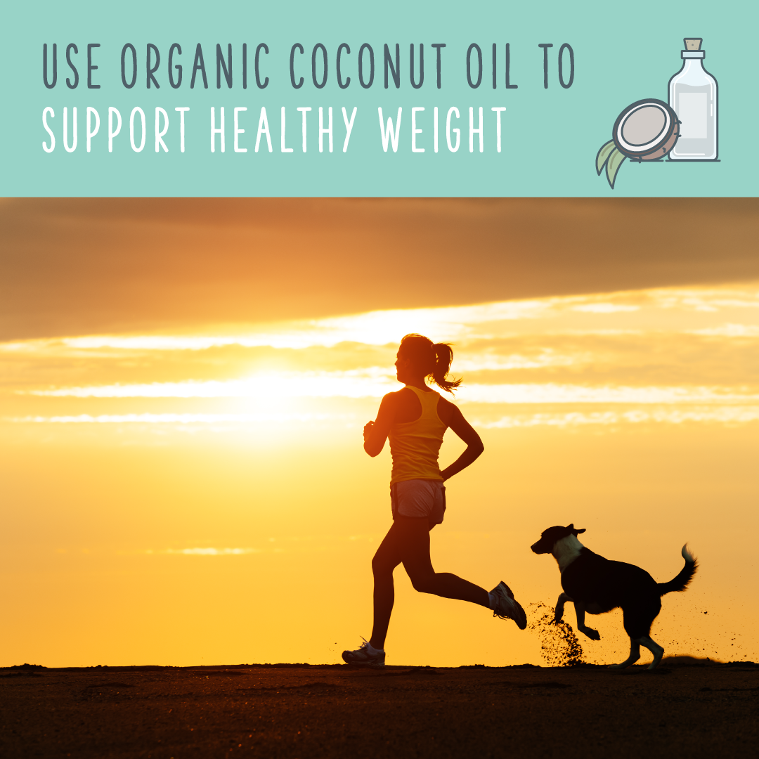 coconut oil for dogs healthy weight