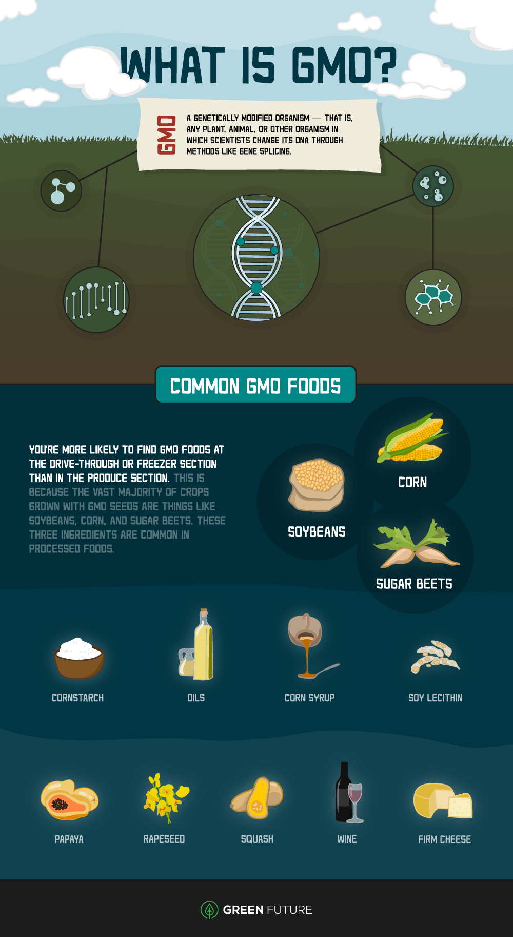 Infographic with a list of GMO foods