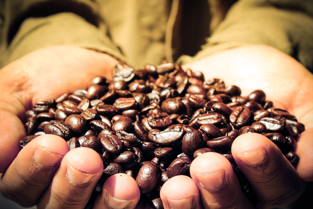 What is fair trade? It's a means of purchase for some growers
