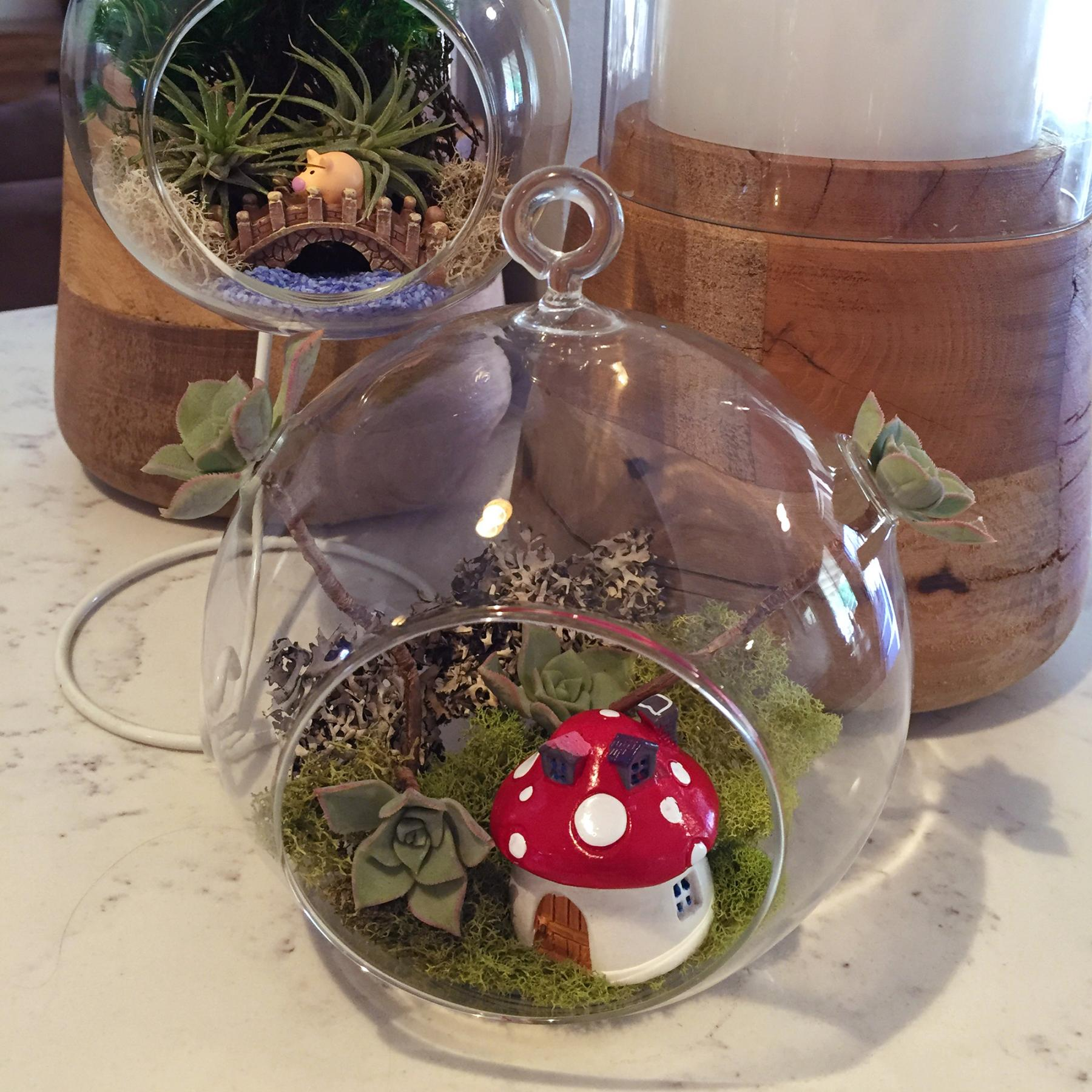 How to make a terrarium with hanging vessel