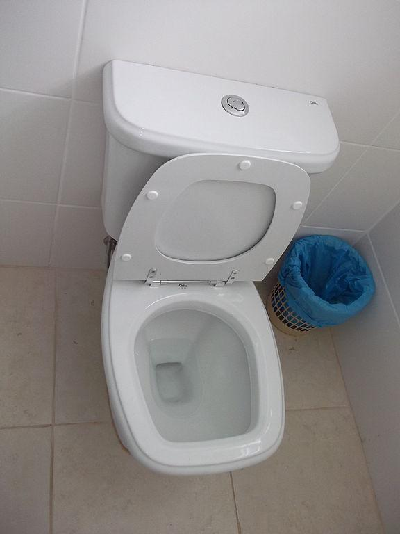 Toilet Double Flush