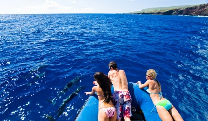 Friends enjoying spinner dolphins off a boat | Hawaii Tourism Authority (HTA) / Tor Johnson