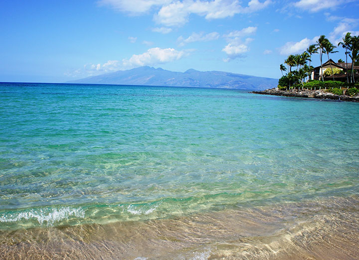 https://www.hawaii.com/maui/beaches/top-5-beaches/  Maui has often been named the Best Island in the world.  Here are Maui's top beaches.