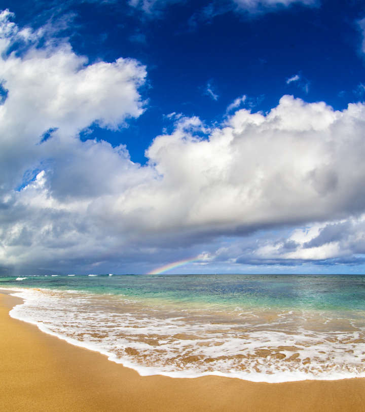 North Shore rainbow, Neal Kido