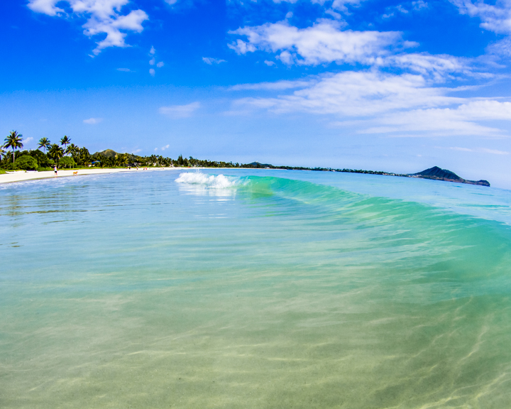 Warm and gentle, Kailua Beach waves are perfect for the family.  Photo courtesy of Neal Kido.