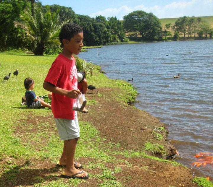 Feeding the ducks and fish at Hoomaluhia Botanical Garden.  Photo courtesy of Shelly Lyons.
