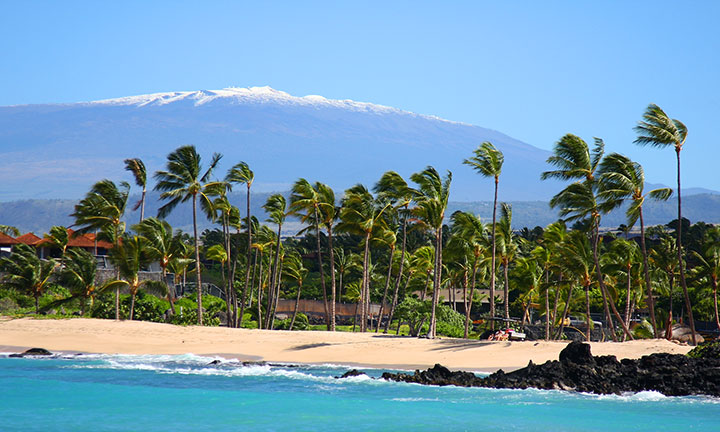 food wine festival on the big island hawaii com