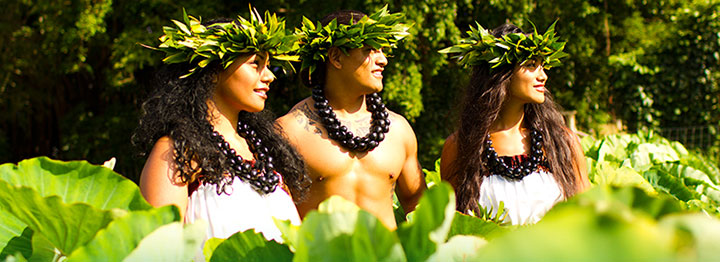 Island Breeze Luau, Kona, Big Island,