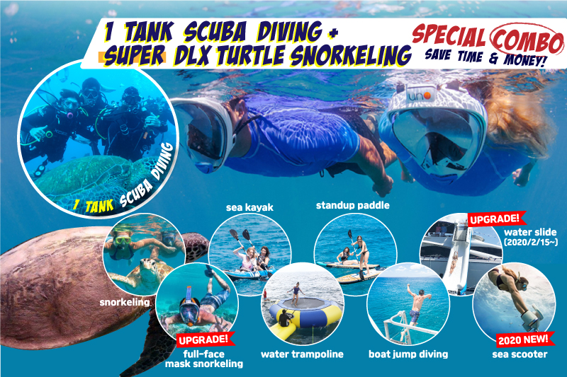 Super Deluxe Turtle Snorkeling & One-Tank Diving