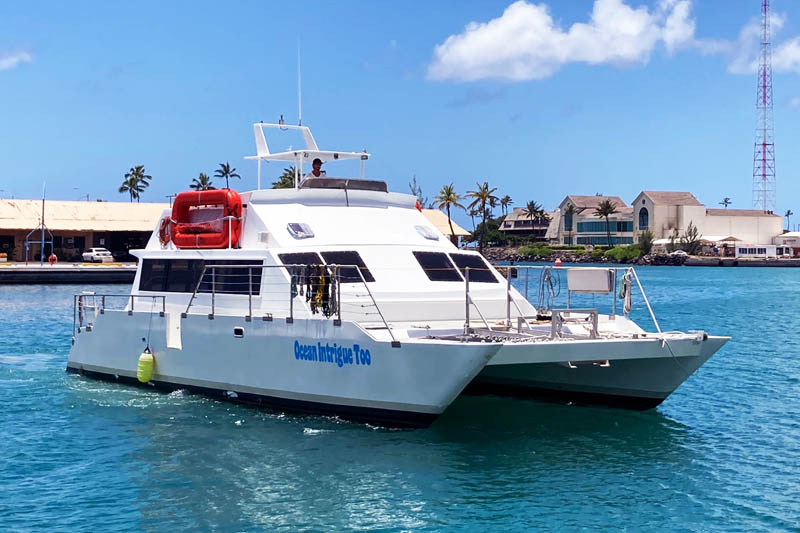 2-Hour Day Time Catamaran Snorkel Private Charter