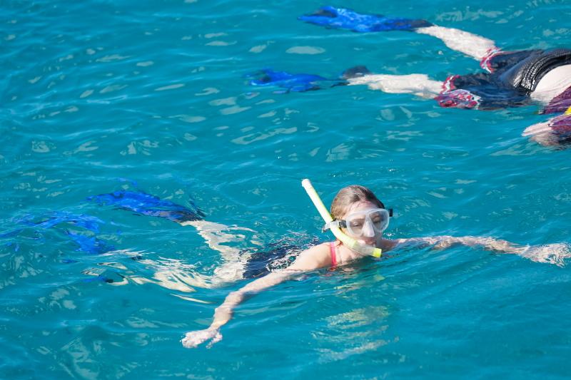 Turtle Snorkeling Cruise