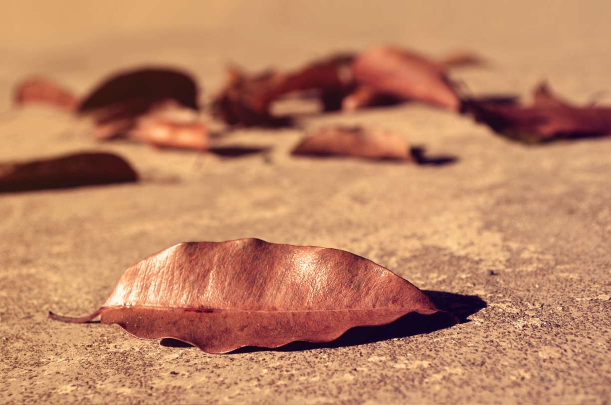your+weight+is+stable.jpg