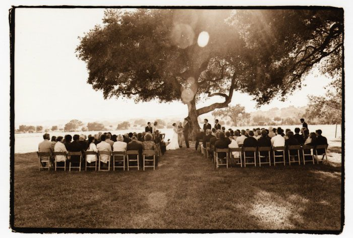 Wedding-pro133