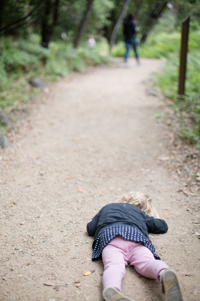 Big-Sur-Travelogue-with-kids_Hither-and-Thither-45