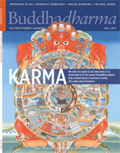 """ Preparing to Die: Practical Advice and Spiritual Wisdom from the Tibetan Buddhist Tradition"" featured in Buddhadharma Magazine."