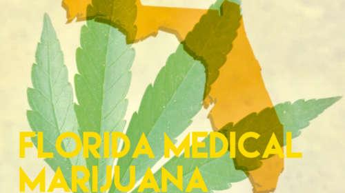 The Hopegrown Report: Florida Medical Marijuana Program