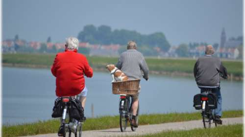 Stay Active, Stay Healthy: How Seniors Can Maintain their Quality of Life