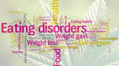 Eating Disorders and Cannabis Treatment