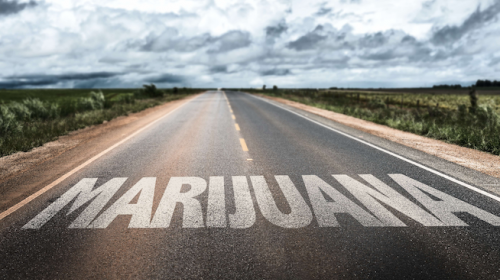 Road to Marijuana Legalization 2020
