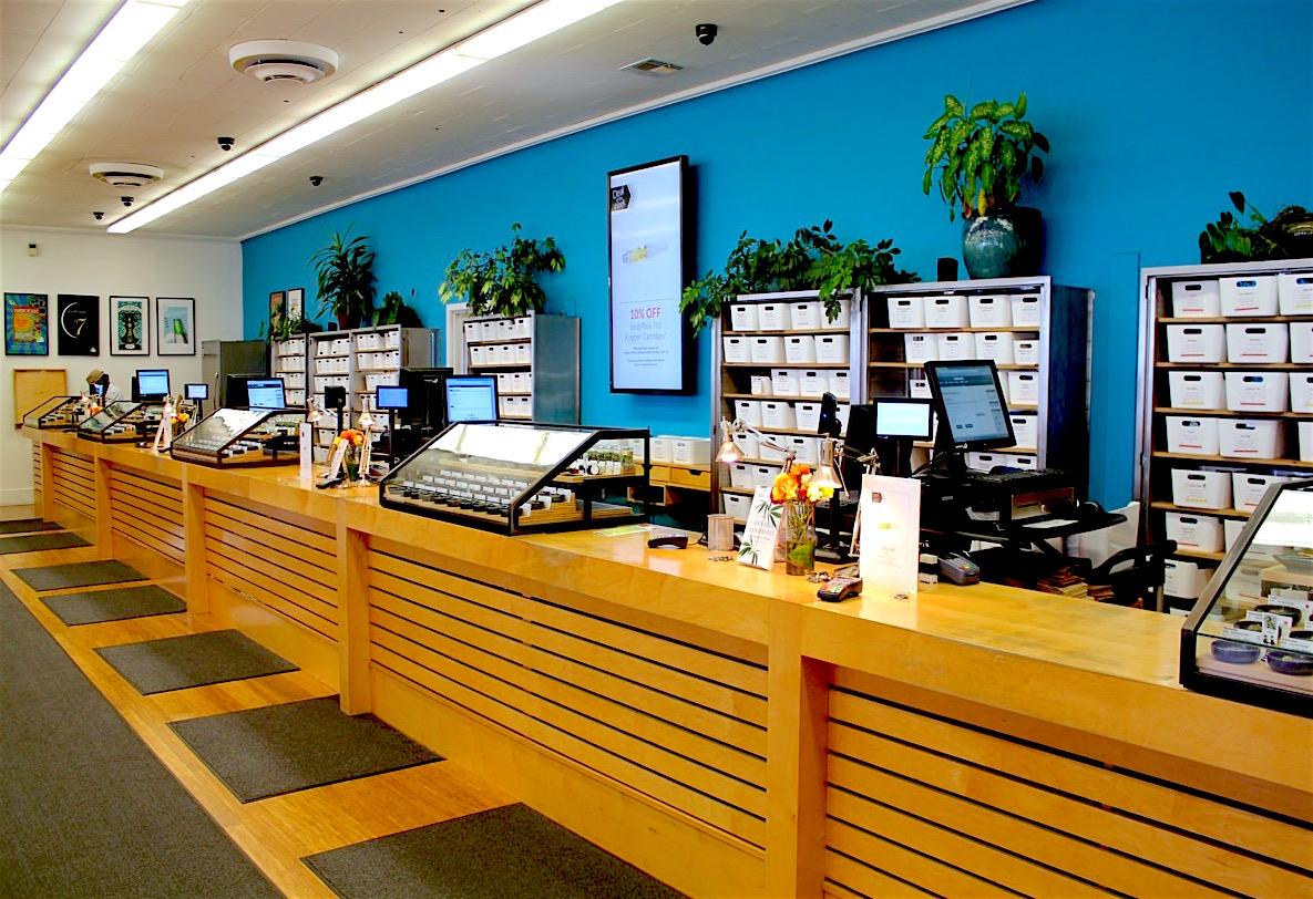 Harborside Health Center | Hopegrown
