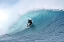 Title: Flea Tubed Surfer: Virostko, Flea Type: Barrel