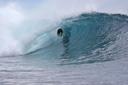 Title: Flea Backside Barrel Surfer: Virostko, Flea Type: Barrel
