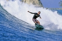 Title: Eric On the Face Surfer: Snortum, Eric Type: Action