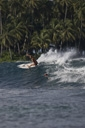 Title: Karina Carving Surfer: Petroni, Karina Type: Action