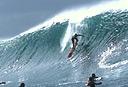 Title: Liam Pipe Drop Surfer: McNamara, Liam Type: Action
