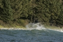 Title: Sepp Backside Boost Surfer: Bruhwiler, Sepp Type: Action