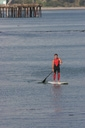Title: Robert Stand Up Paddling Surfer: Weaver, Robert Type: Action