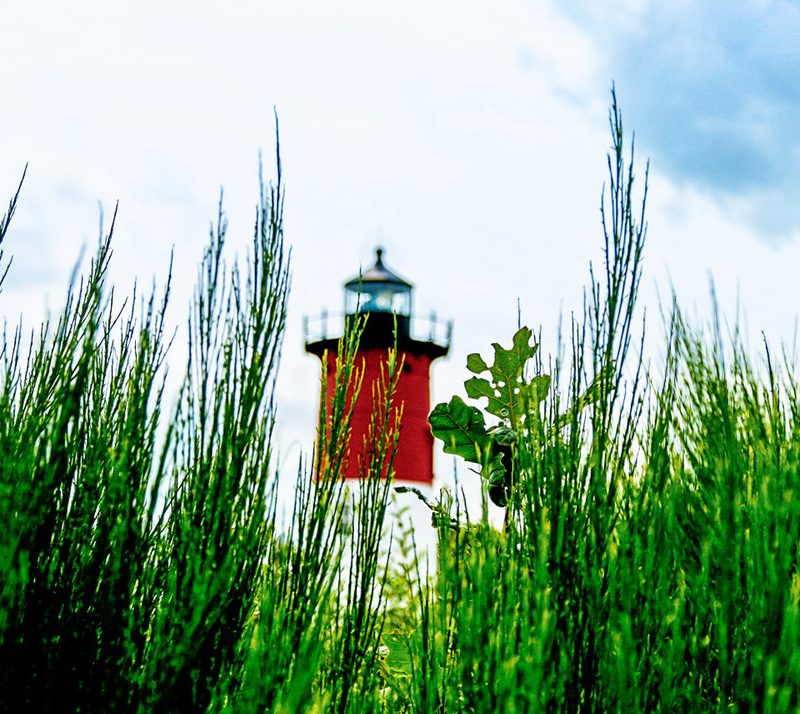 A lighthouse on cape cod viewed through tall grass.