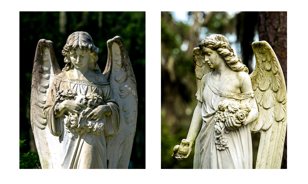 Angel statues from our travel to the bonaventure cemetery in Savannah
