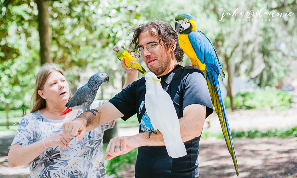 Jake gets loaded up with parrots in Forsyth Park travel photo