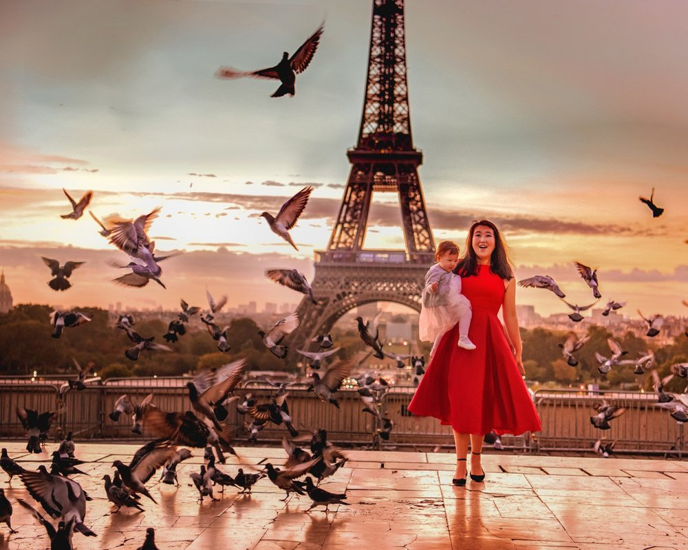 Pigeons in front of the Eiffel Tower: a photographer's dream!