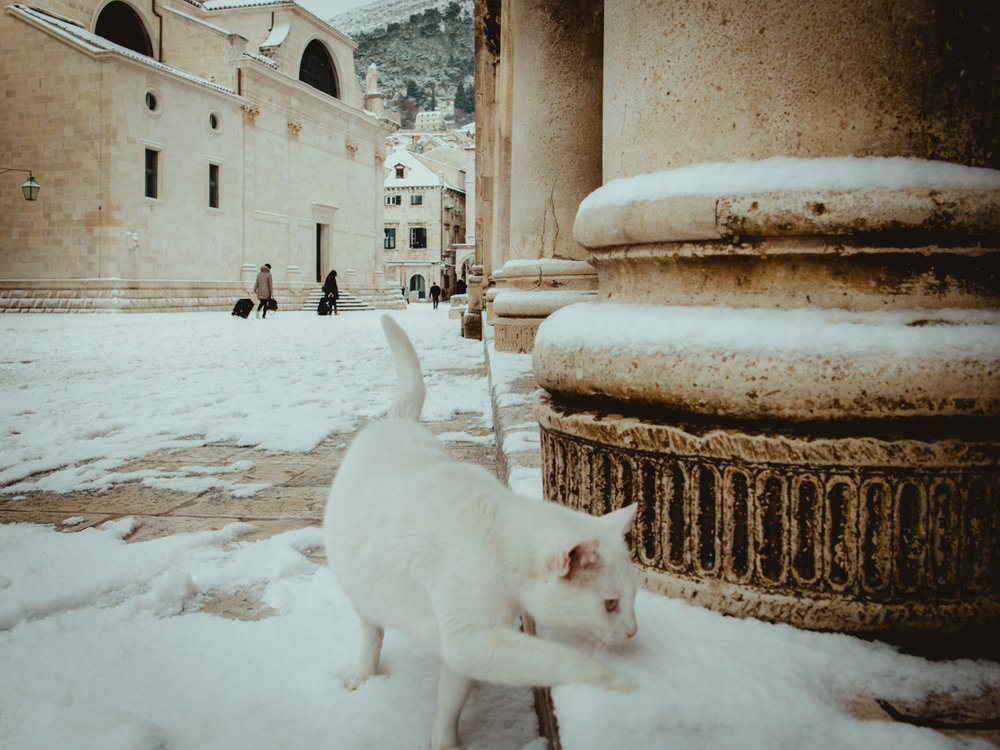 locals enjoying January snow in Dubrovnik Croatia.