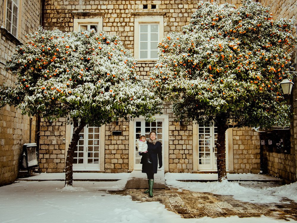 Winter in Dubrovnik, Croatia had snow on orange trees. It was a rare sight.