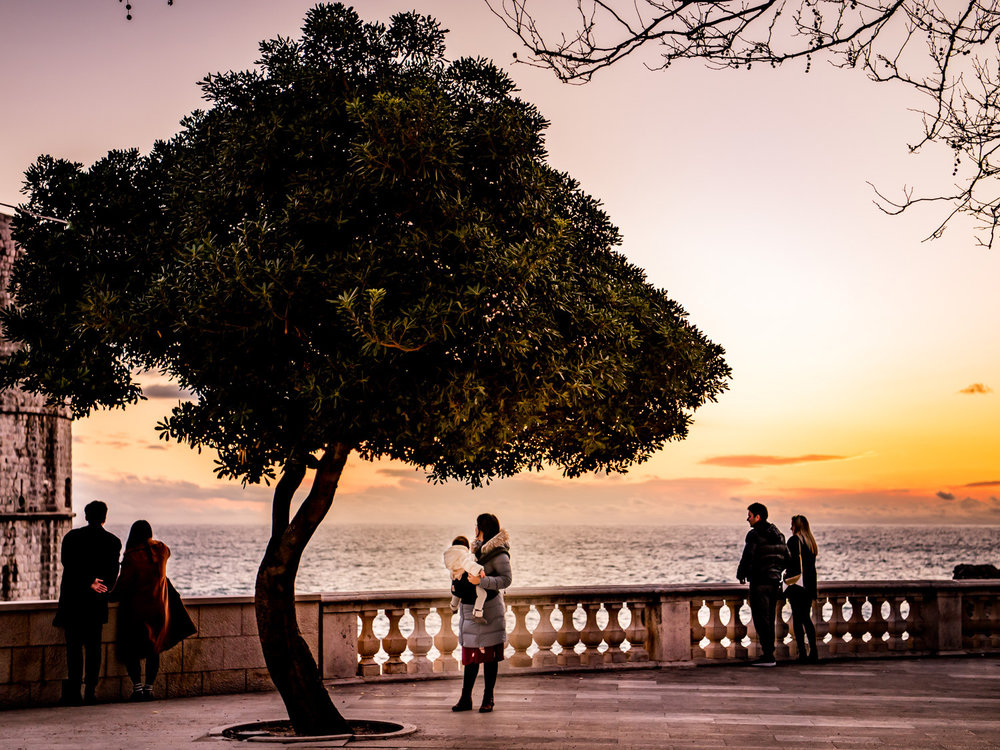 The sun sets on a single tree on the promenade just outside the gates of Dubrovnik, Croatia.