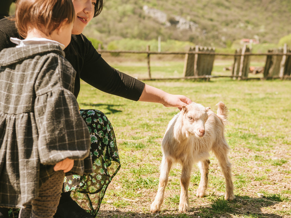 Petting a friendly goat in Montenegro.