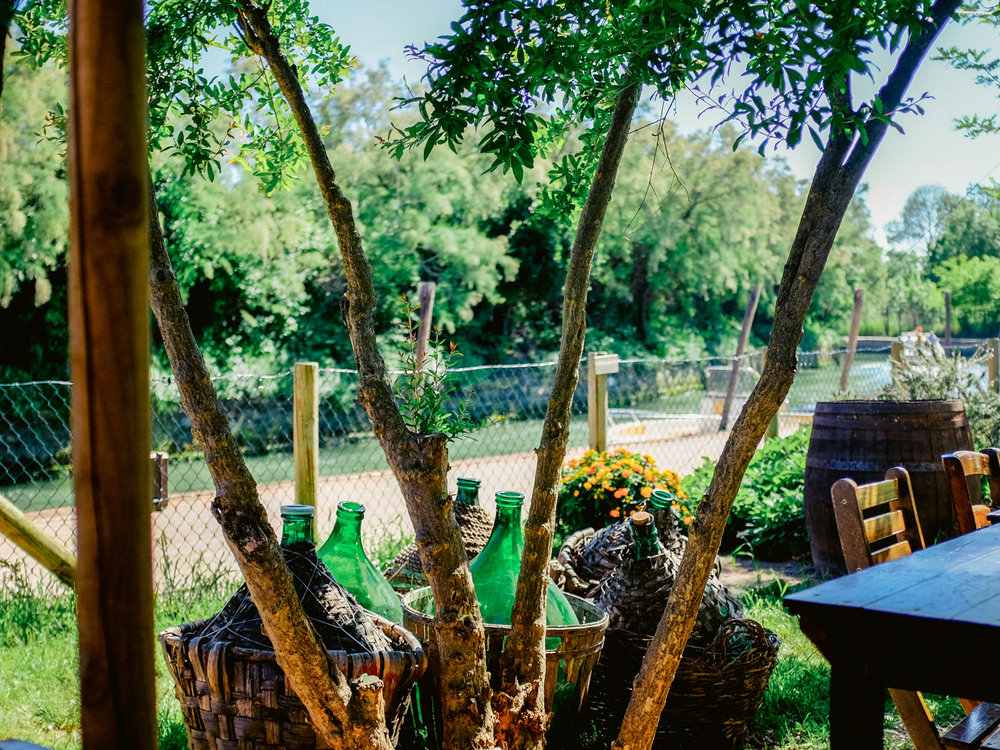 A shady place to enjoy a meal on the Venetian island of Torcello.
